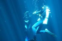 Diving_241