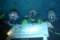 Diving_291