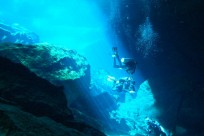 Diving_301