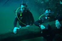 Diving_411