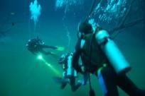 Diving_421