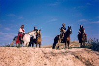 Horses01